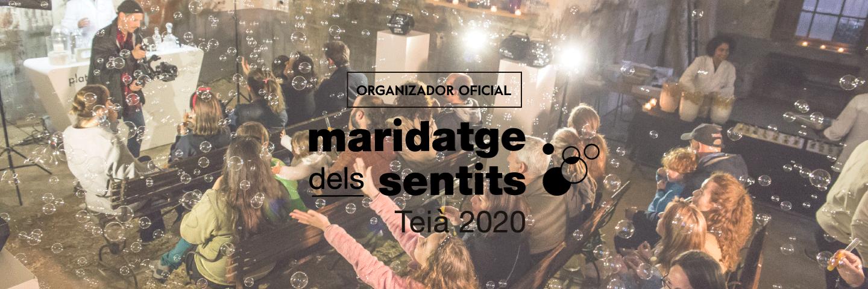 Maridatge dels sentits Teia Ainea